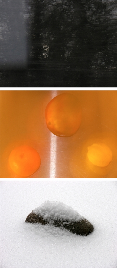 WW_dark-motion-mango-orange-lemon-snow-stone